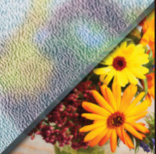 Example of P.62 glass over image of flowers, textured privacy glass