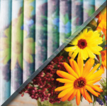 Example of reeded glass over image of flowers, textured privacy glass