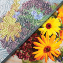 Example of rolled gluechip glass over image of flowers, textured privacy glass with floral pattern